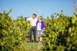 vignoble savennières vin angers