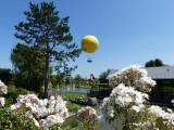 le-ballon-de-terra-botanica-angers-780773-797313